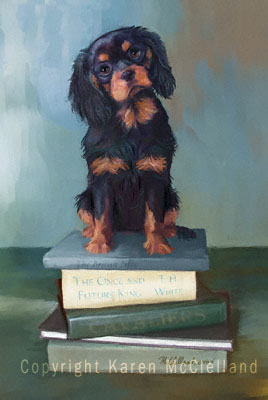 Black and Tan Cavalier King Charles Spaniel