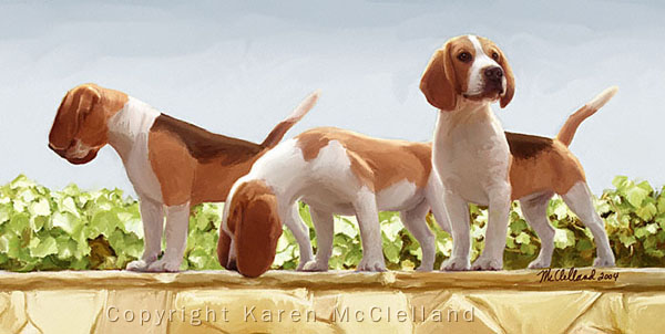 Beagle painting by Karen McClelland